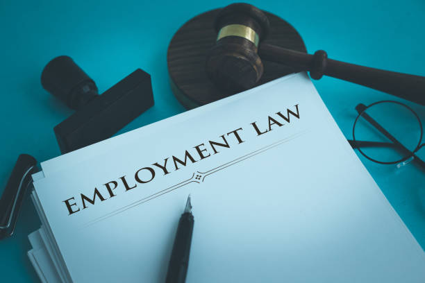 """Can an Engineer, Teacher, Lawyer and Doctor file a claim/case against unlawful laying off or retrenchment or termination as a """"Workman"""" under the Industrial Disputes Act?"""
